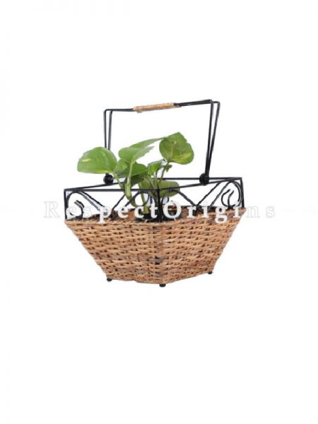 Buy Hand Braided Rattan Cane Planter with Wrought Iron trimming and handlein 9x6x9 inches|RespectOrigins