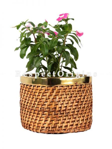 Buy Ecofriendly Handwoven Rattan Cane Planter with Brass Trim. 6x6x6 inches|RespectOrigins