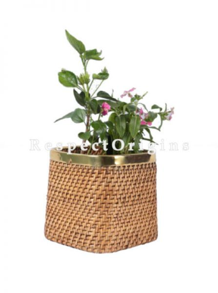 Buy Ecofriendly Hand Braided Cubical Rattan Cane Planter with Brass Trimin 10x10 inches; RespectOrigins.com