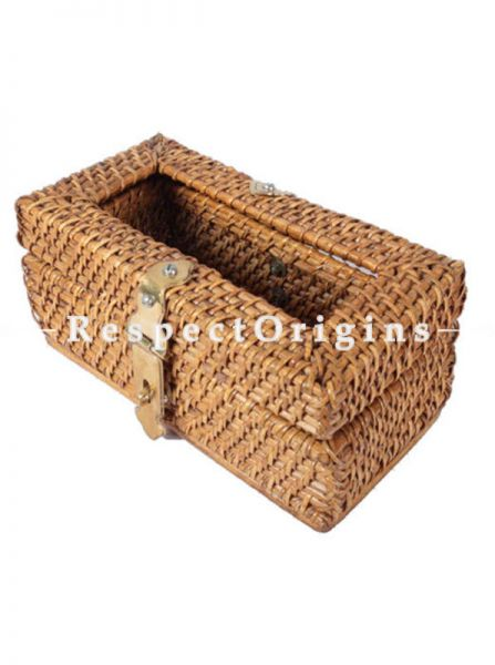 Buy Ecofriendly Handmade Rattan Cane Tissue Holder Box with Brass Hookin 5x4x9 inches; RespectOrigins.com