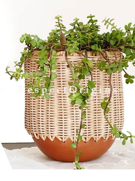 Buy Hercule Terracotta Planter At RespectOrigins.com