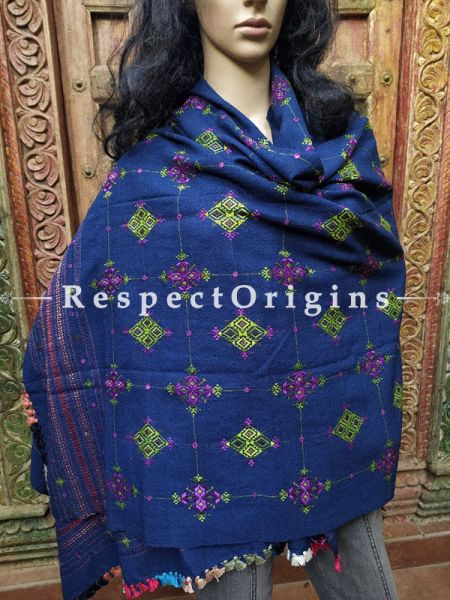 Luxurious Handloom Fine Soof Embroidered Woollen Navy Blue Shawl With Green and Purple Embroidery Online at RespectOrigins.com