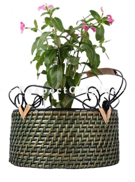 Buy Round Hanging Flat Base Planter With Wrought Iron Handlein 9 X 4 inches|RespectOrigins