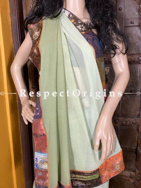 Vintage Lime Shade Banarasi Border on Georgette Designer Formal Ready-to-Wear Saree; RespectOrigins.com